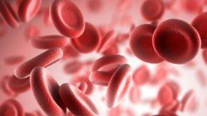тромбоциты в крови понижены у взрослого