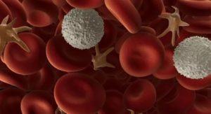 поднять уровень тромбоцитов в крови