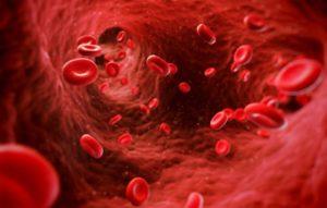 Повысить эритроциты в крови