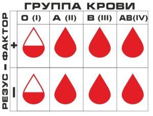 Группа крови и разрешенные продукты
