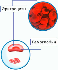 Какая норма гематокрита у женщин