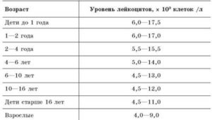норма лейкоцитов