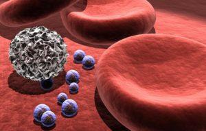 Тромбоциты – какая норма у женщин по возрасту