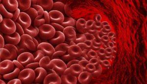 показатели вязкости крови