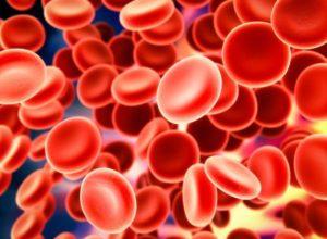 Норма сывороточного железа в крови