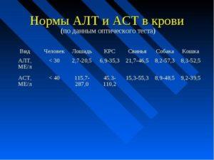 Основные причины, по которым может быть повышение АЛТ и АСТ в крови
