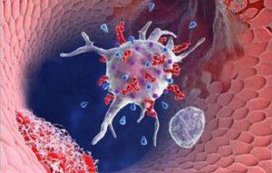 Причины снижения показателей тромбоцитов