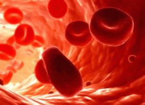 Почему может быть густая кровь у человека и лечение